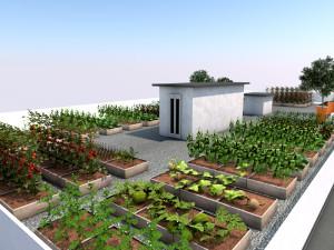 Le-verdure-del-mio-tetto